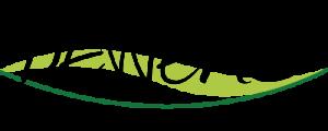 BEWENA Logo (m)-01